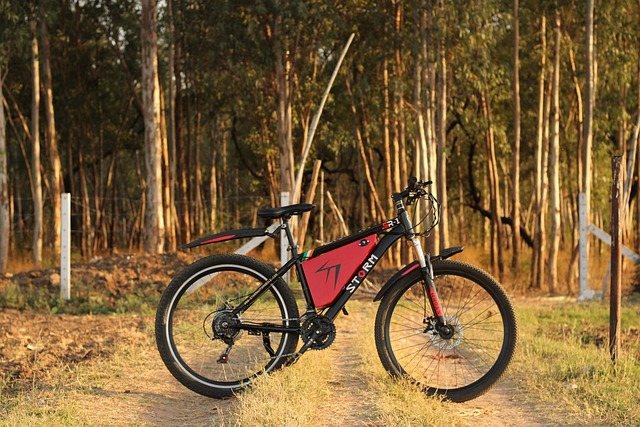 izposoja-elektricnih-koles